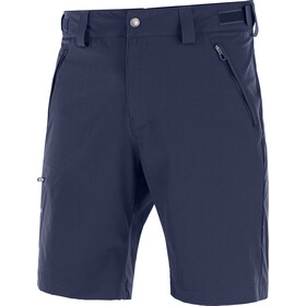 Salomon Wayfarer Shorts Men grey